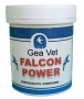 Falcon_Power_4caa362ea05fe.jpg